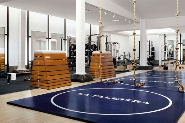SPEAR Physical Therapy Midtown NYC Gym in the Plaza Hotel with LA PALESTRA